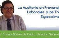 La Auditoría de PRL y los Trabajadores Especialmente Sensibles