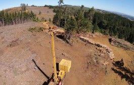 Guía para la gestión de la PRL en las actividades forestales
