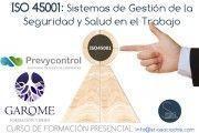 Curso ISO 45001: Sistemas de Gestión de la Seguridad y Salud en el Trabajo (Edición: Granada)