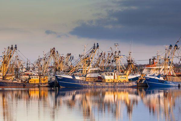 La suma del conocimiento y la competencia determinan mejores condiciones de trabajo en los puertos pesqueros del País Vasco