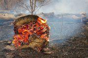 Manual de buenas prácticas en incendios forestales