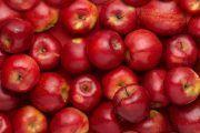 ¡¡¡ Comienza la temporada de la manzana ¡¡