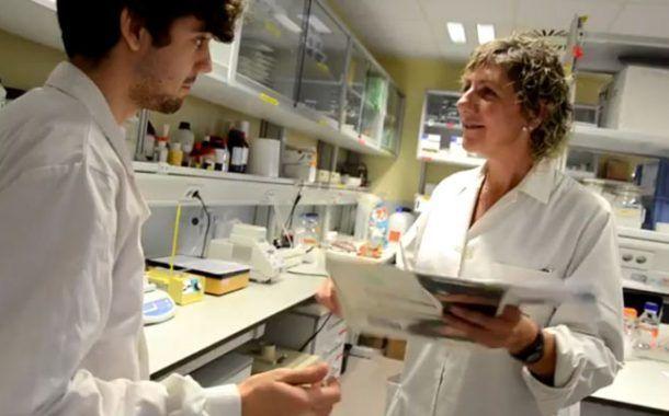 Riesgos y medidas preventivas en laboratorios del CSIC