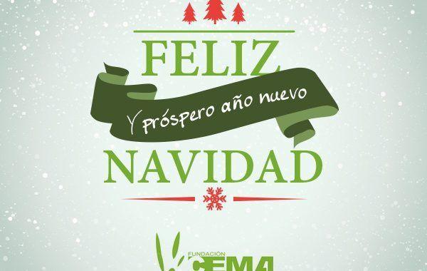La Fundación Laboral del Cemento y el Medio Ambiente os desea una feliz navidad y sus mejores deseos para el año nuevo
