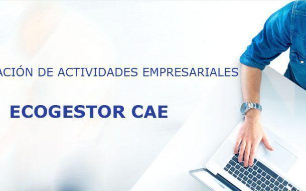 ECOGESTOR CAE: Coordinación de Actividades Empresariales