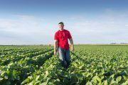 La prevención en el sector agrario