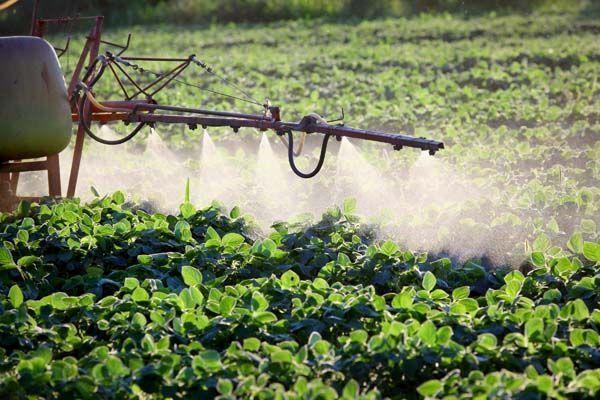 Evaluación del riesgo por exposición a productos fitosanitarios