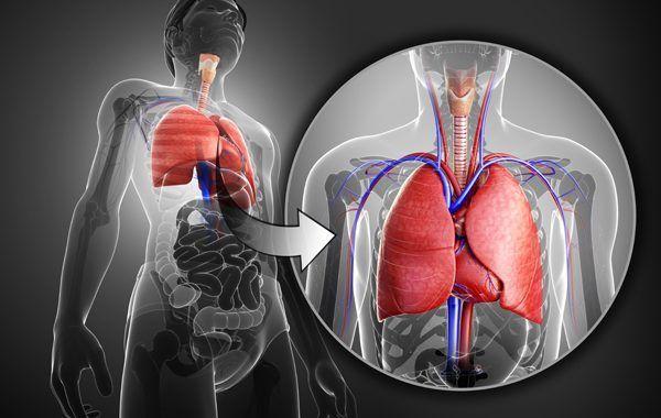 Enfermedades profesionales del aparato respiratorio