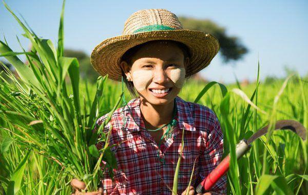 Día Mundial contra el Trabajo Infantil - 12 de junio de 2018