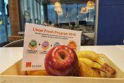 Fresh Program, el programa de Empresa Saludable de Orange