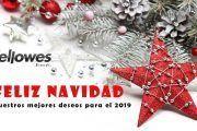 Fellowes te desea Feliz Navidad!!!