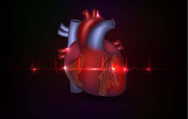 CNIC y Quirónprevención firman un acuerdo para promover la salud cardiovascular