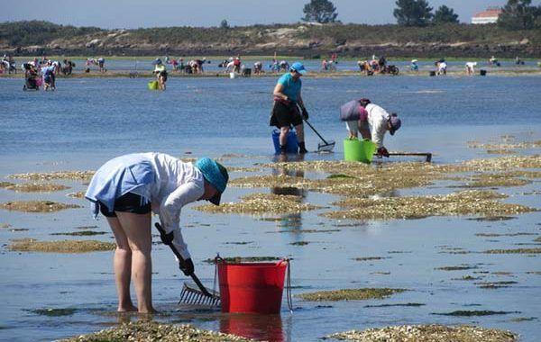 Se reconocen nuevas enfermedades profesionales de las rederas y mariscadoras