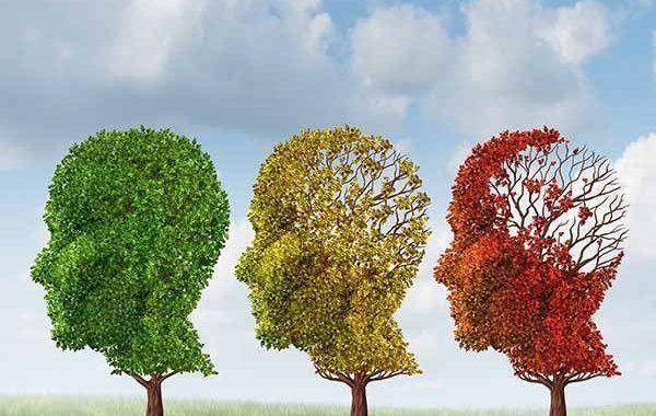 Campofrío promueve el envejecimiento activo