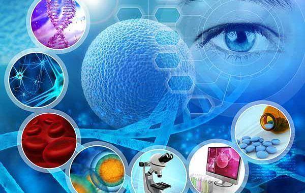 Documento Técnico para la investigación de las enfermedades profesionales