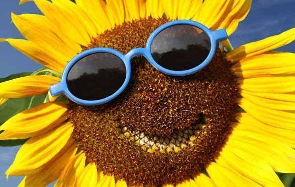 ¿Gafas de sol o gafas UV? Cómo escoger la mejor protección ocular en verano