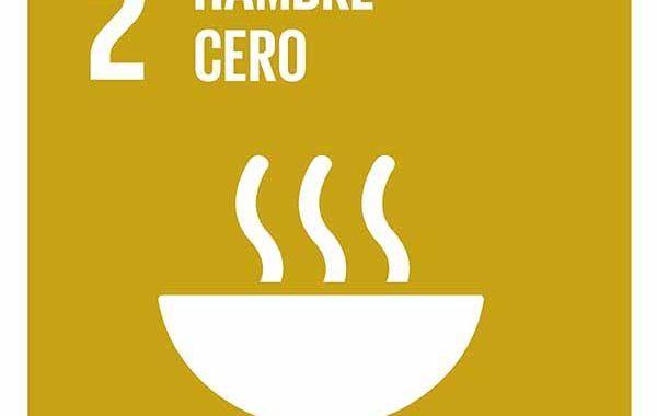 Objetivo 2: Poner fin al hambre, lograr la seguridad alimentaria y la mejora de la nutrición y promover la agricultura sostenible #ODS