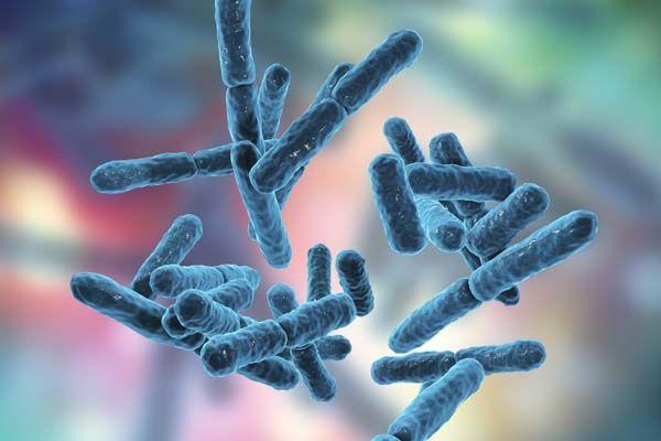Revisión bibliográfica de la normativa en relación al control microbiológico en centros hospitalarios