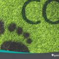 ¿Cómo pueden las empresas reducir la Huella de Carbono?