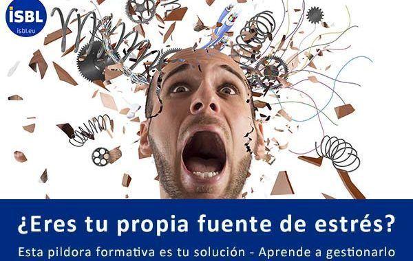 Formación OnLine para empresas: ¿Eres tu propia fuente de estrés?