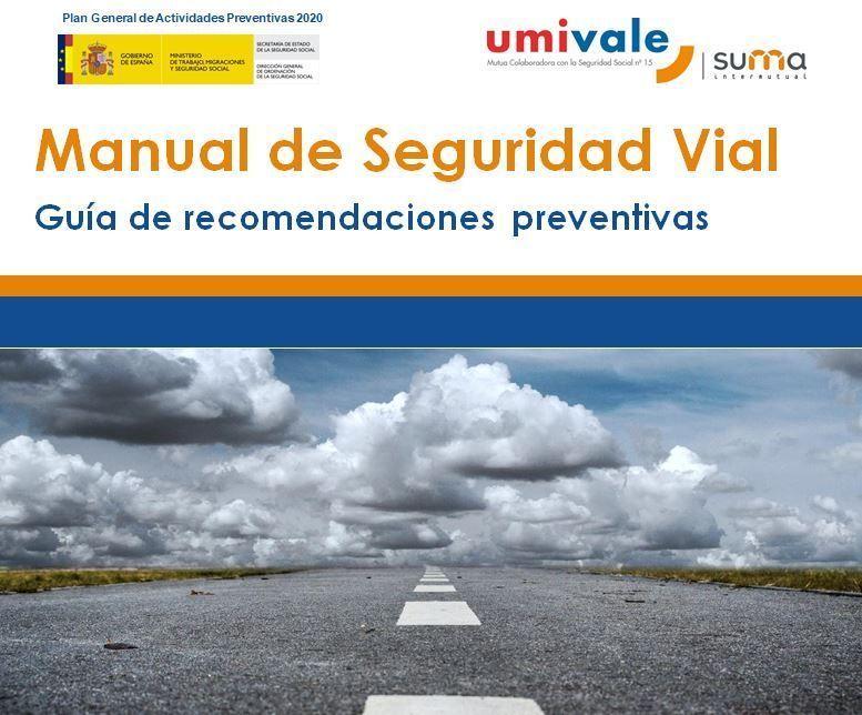 Manual de Seguridad Vial: Guía de recomendaciones preventivas