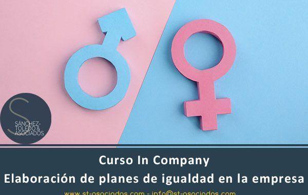 Curso In Company: Elaboración de planes de igualdad en la empresa