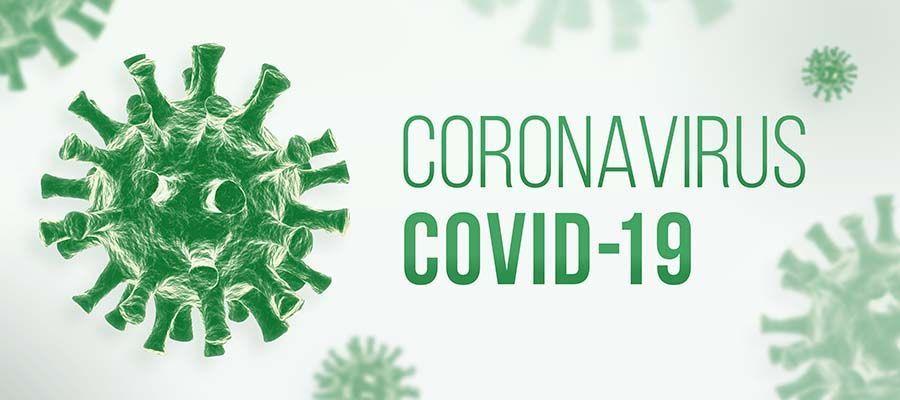 El CSIC publica un informe que resume el conocimiento científico sobre la Covid-19