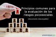 Principios comunes para la evaluación de los riesgos psicosociales