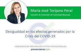 Desigualdad en los efectos generados por la Crisis del COVID-19
