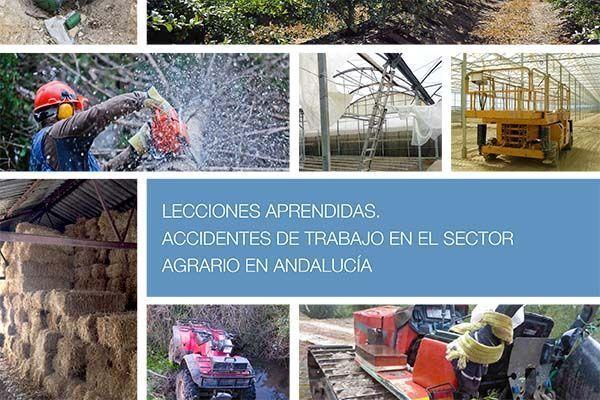 Lecciones Aprendidas: Accidentes de Trabajo en el Sector Agrario