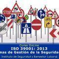 """Experto ISO 39001 """"Sistemas de Gestión de la Seguridad Vial"""""""