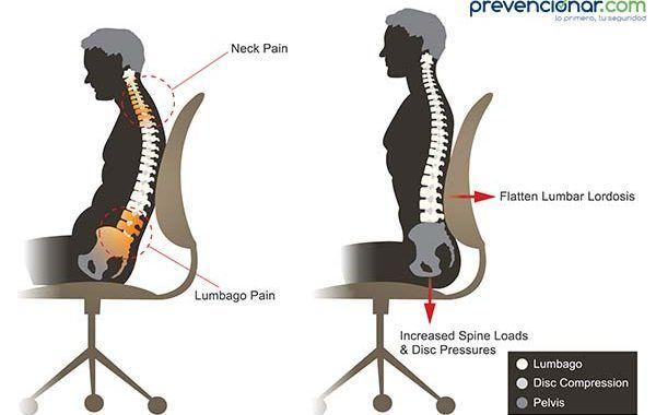 10 Requisitos a tener en cuenta para seleccionar las sillas de oficinas