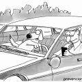 distracciones volante