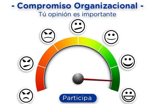 Observatorio del Compromiso Organizacional, última semana para participar