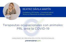 Terapeutas ocupacionales con animales: PRL ante la COVID-19