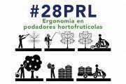 Ergonomia en podadores hortofruticolas #webinar