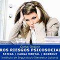OTROS RIESGOS PSICOSOCIALES