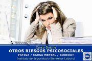 Curso OnLine: Otros Riesgos Psicosociales (Fatiga, Carga Mental, Boreout.....)