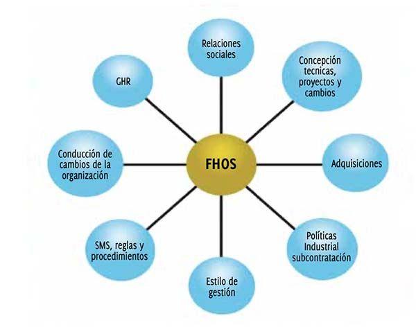 Los campos involucrados en los FHOS