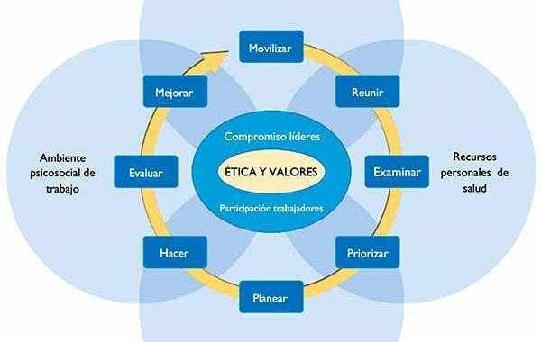 El ambiente físico de trabajo en el modelo de empresas saludables de la OMS