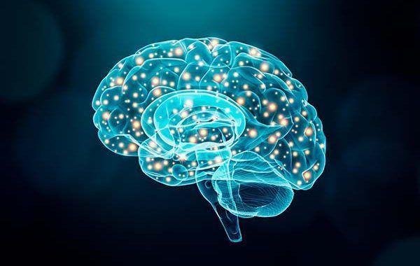 SBC y Neurociencia: ¿Compatibles